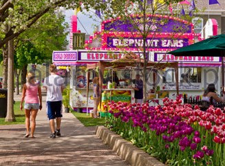 The five favorite foods of Tulip Time