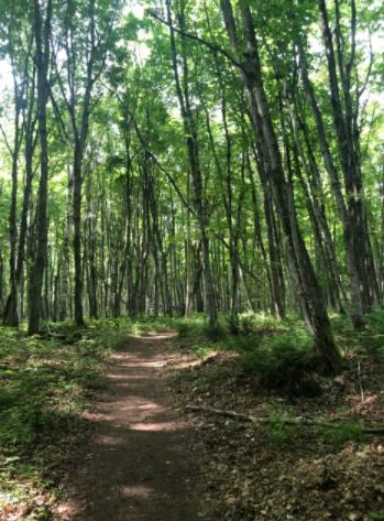 Best running trails in Ottawa County